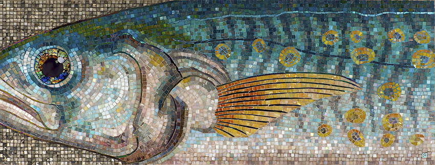 Macro Mackrel Mosaic