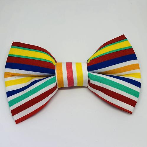 Fun & Funky Bow Tie