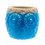 Thumbnail: Baby Beach Owl Succulent Planter Pot
