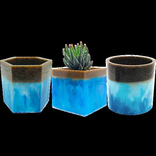 Ocean Beach Large Succulent Planter Pots