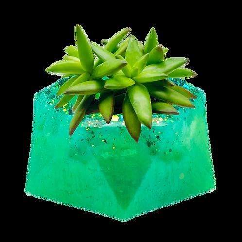 Emerald Lagoon Extra Small Succulent Planter