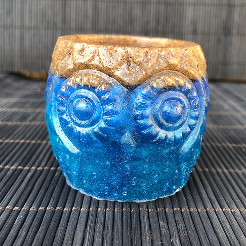 Baby Beach Owl Succulent Planter Pot