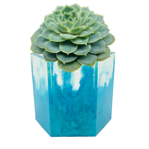 Turquoise Waves Large Succulent Planter Pot