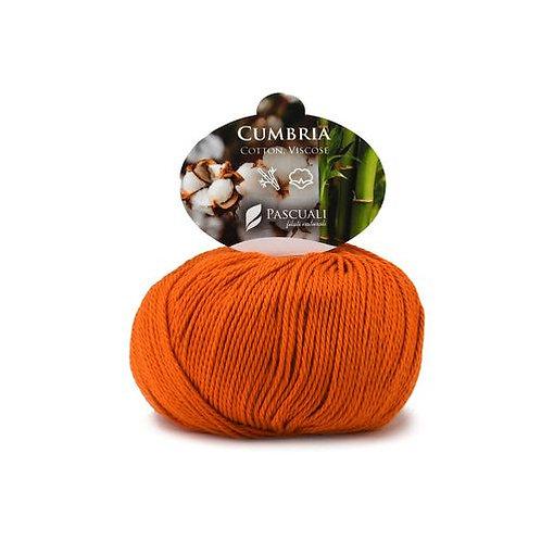 Cumbria 311 orange