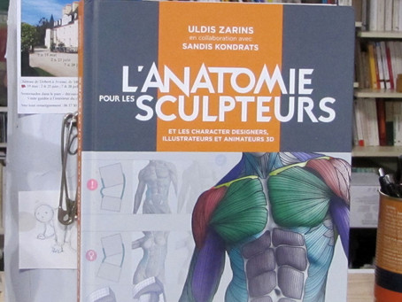 L'Anatomie pour les Sculpteurs