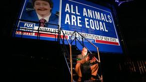Review: Animal Farm at the Heath Ledger Theatre, State Theatre Centre