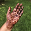 Thumbnail: Bulk Henna Paste with Rolled Cones