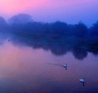 The River Witham at dawn