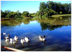 parque-ecologico-araras