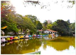 lago-municipal-araras
