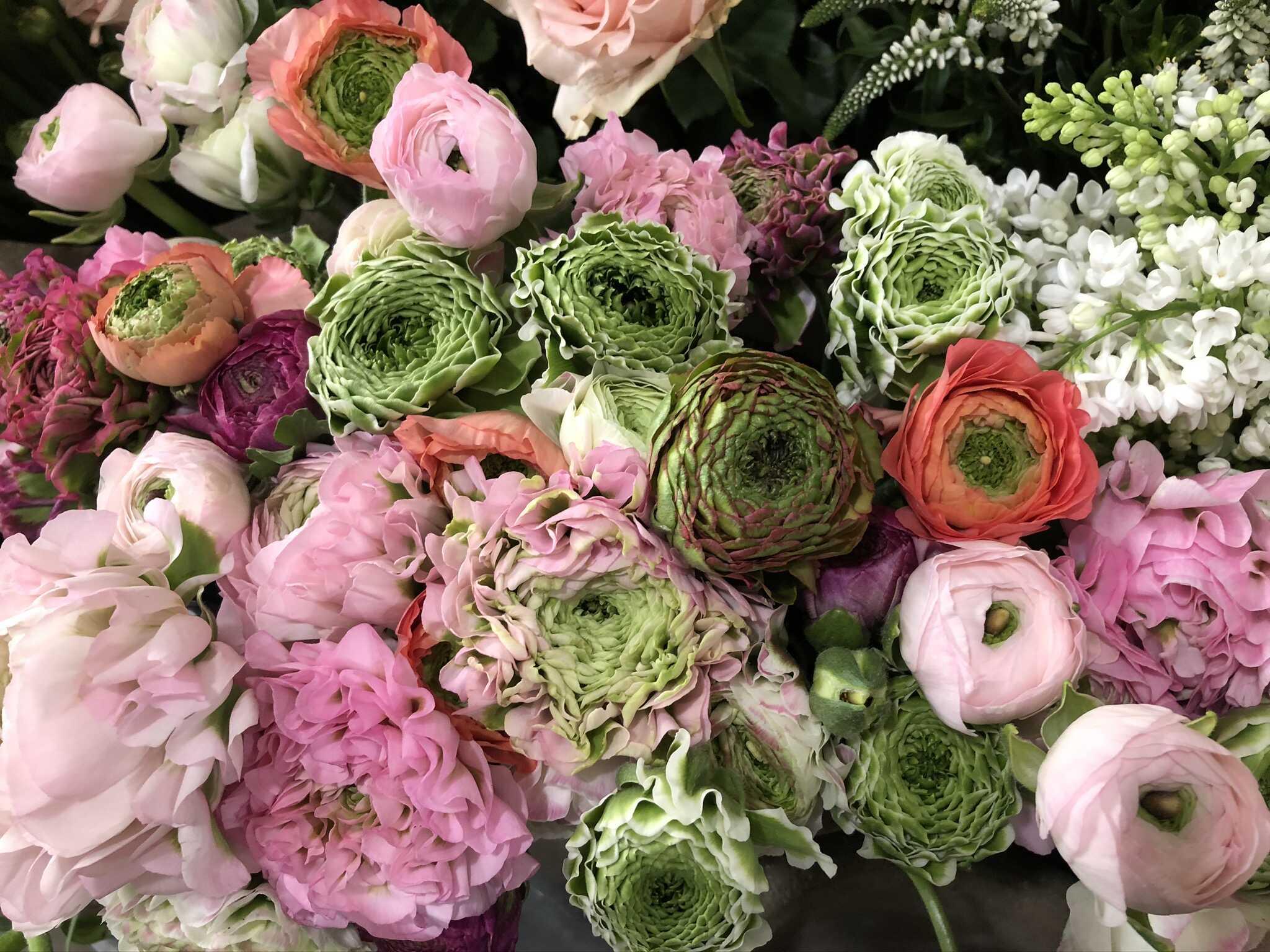 Table renoncules varies Marlies Fleurs f