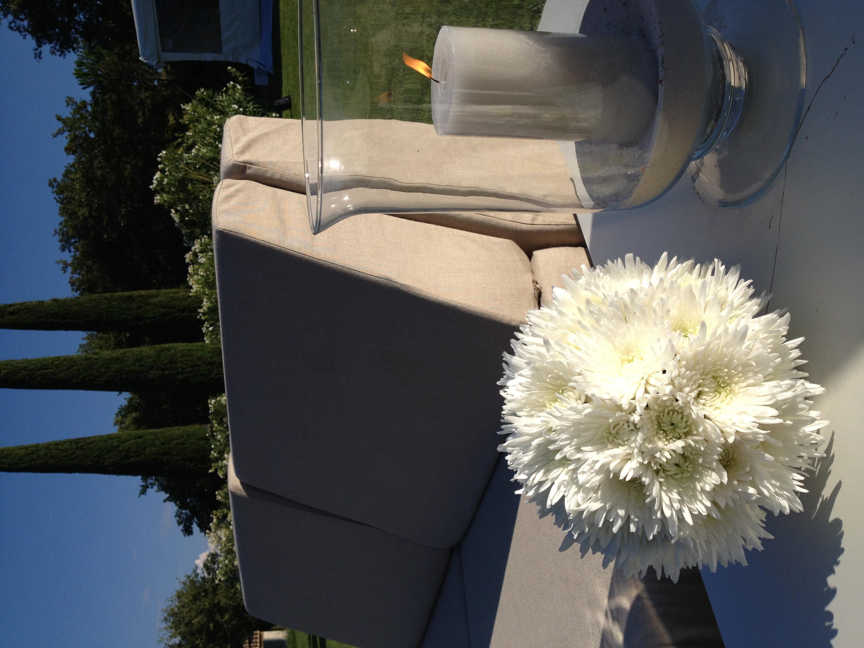Décoration jardin chrysanthèmes Marlies Fleurs fleuriste Nimes