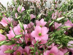Table lisianthus wax Marlies Fleurs fleu