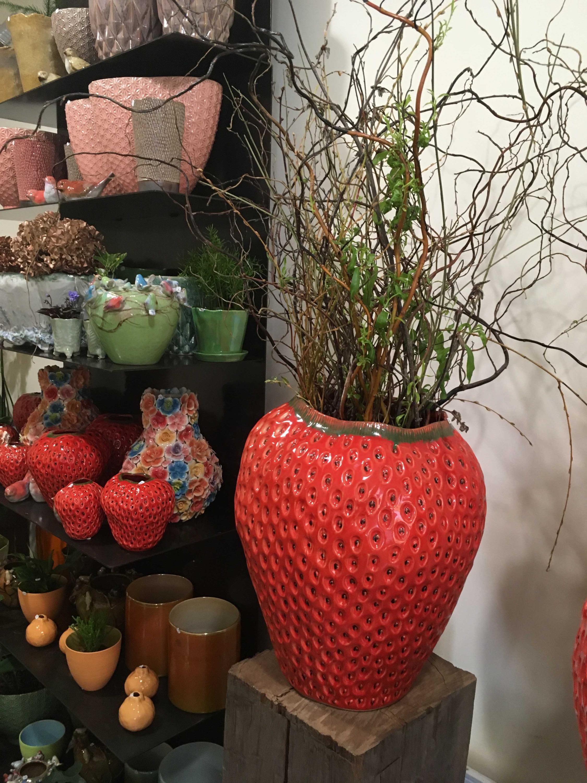 pots fraises Marlies Fleurs fleuriste Nimes