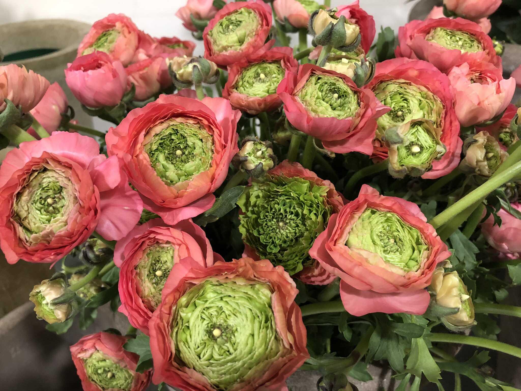 Table renoncules Marlies Fleurs fleurist