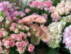 Marlies Fleurs Fleuriste Nimes Accueil 2