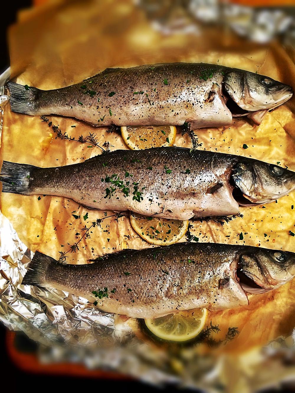 fish+1.jpg