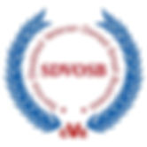 SDVOSB-Logo.jpeg.jpg