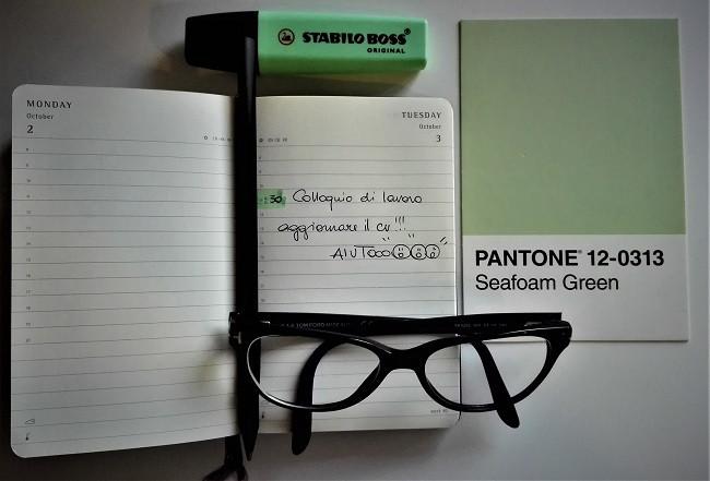 Pantone 12-0313