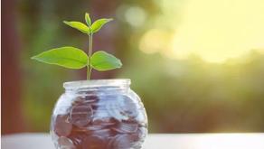 ESG: conheça o critério que guia investimentos com foco em sustentabilidade