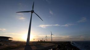 3 dicas de como investir em energia limpa e sustentabilidade, segundo o UBS