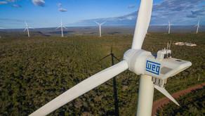 Benefícios da energia renovável chamam a atenção das empresas