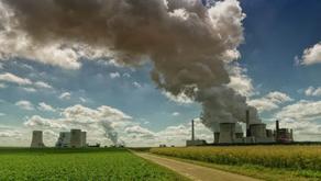 Greenwashing: o que é e como identificar a prática da falsa sustentabilidade