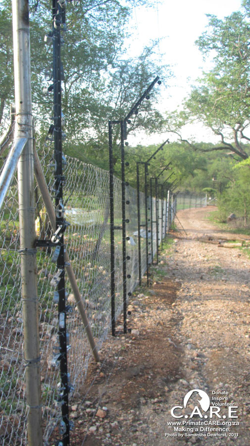 Very Effective Baboon-Proof Electric Fence
