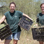 Collecting Vegetation For the Animals