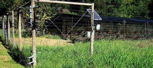 Electric Fence.jpg