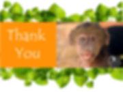 thank-you-love-Teresa.jpg