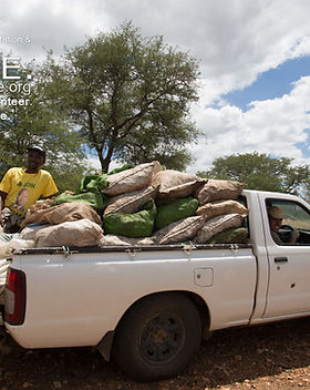 Truck full of food for baboons