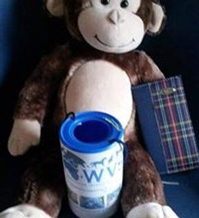Fundraisig monkey coffee morning