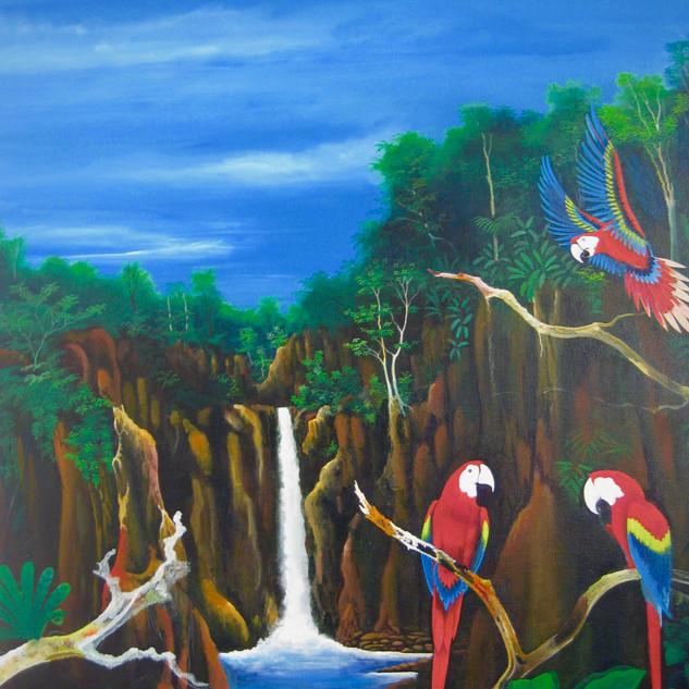 Flying Scarlet Mackaws, 2011