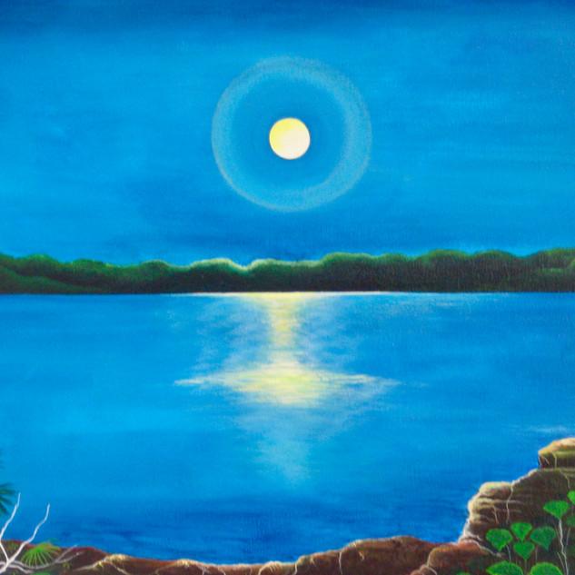 La Luna Llena en lago yarinacoche, 2010