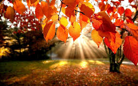 10 Autumn Equinox Considerations