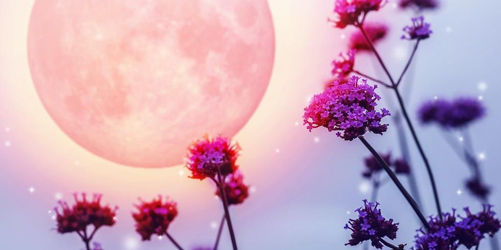 Full Moon Meditation on Enthusiasm!
