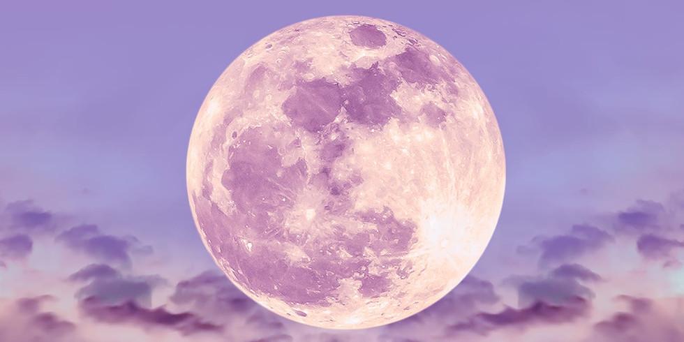 Full Moon Desert Retreat & Past Life Regression
