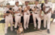 Bark at the park, Purcellville Cannons Baseball,