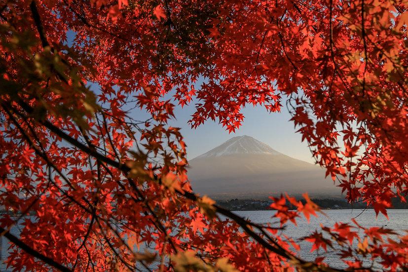 AWJ001_054 Photo by Makoto Hashimuki