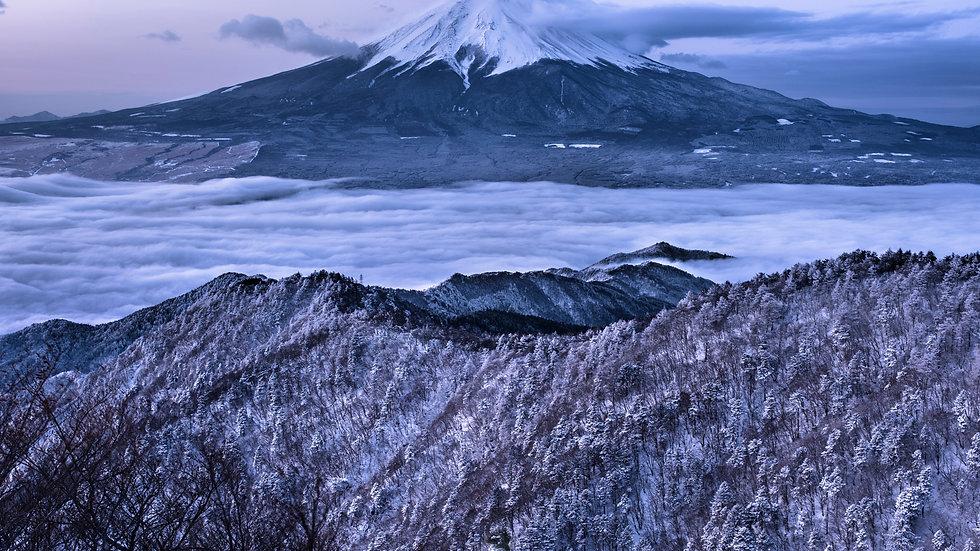 NIF004_025 Photo by Riki Tamura