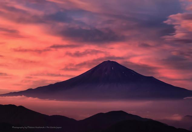 初夏の富士山と雲海の夕焼け