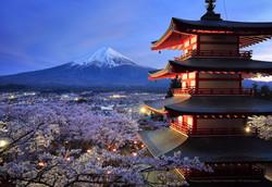 桜と五重塔と富士山の夜景