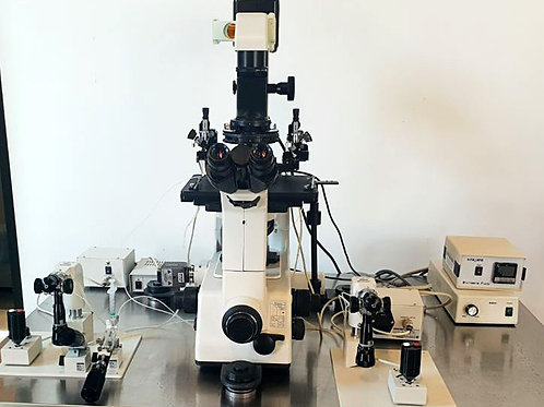 Nikon TE-300, NT-88-V3 Microscope Set