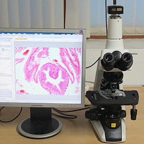 Nikon Eclipse E200 Microscope
