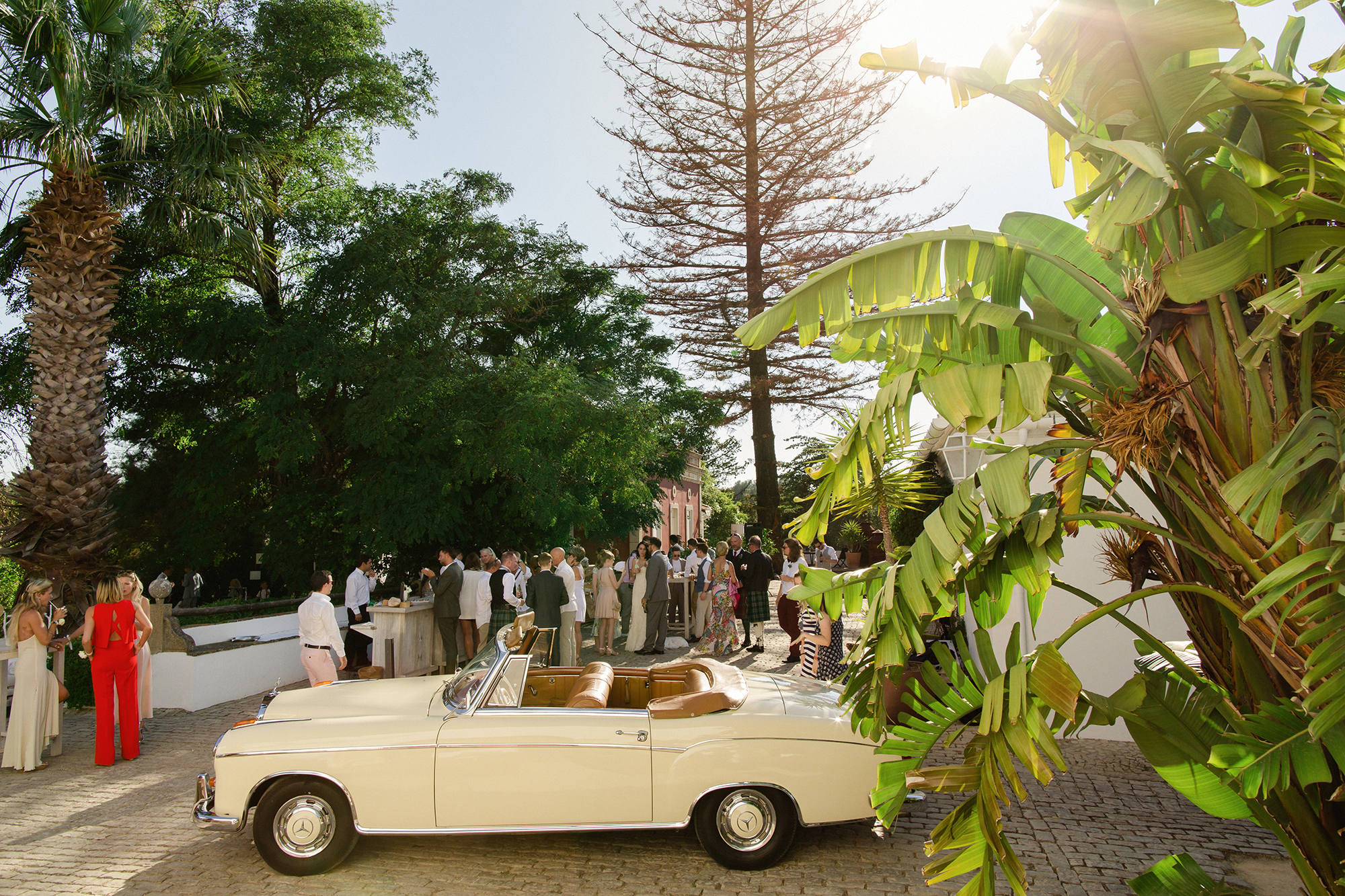 Weddings in the Agostos