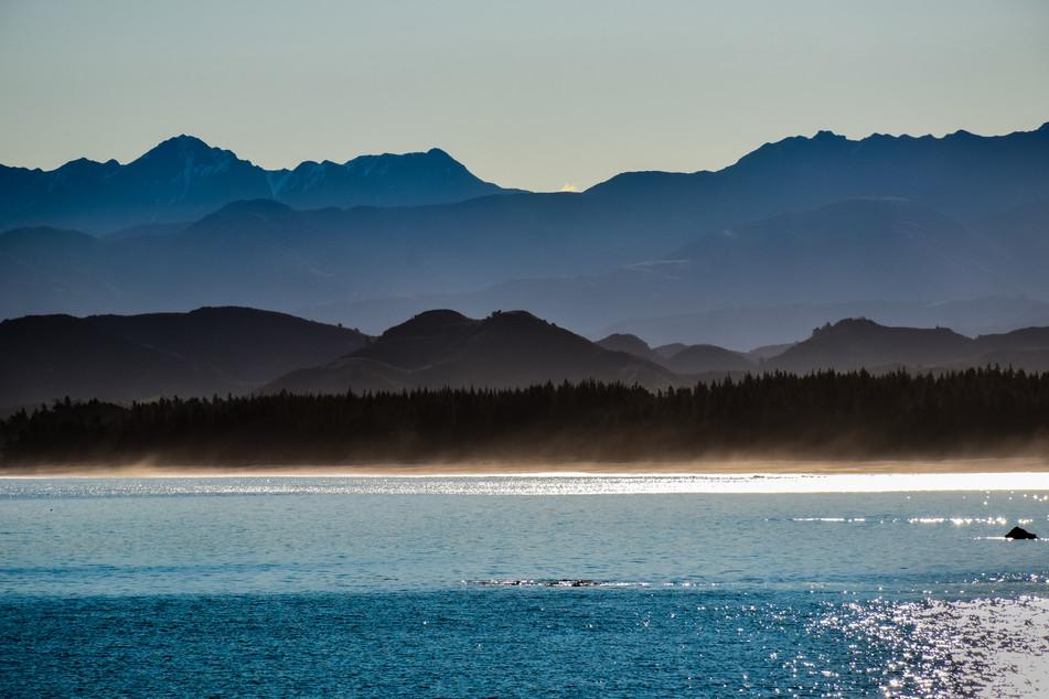 Beachlines 2.jpg