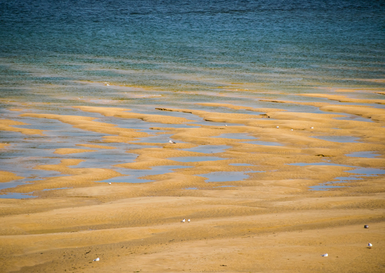tidalines_