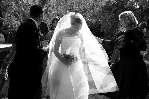 Waiheke Wedding