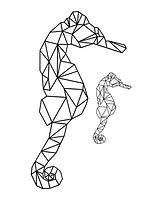 Seahorse Geometric.png